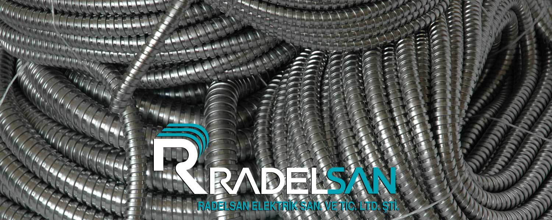 Professional Partner: Radelsan